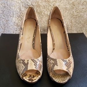 FRANCO SARTO- Snake skin shoes
